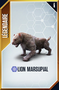 Lion Marsupial (The Game)
