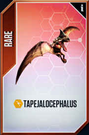 Tapejalocephalus Card.PNG
