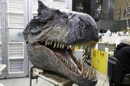 BABR Allosaurus Maquette Head