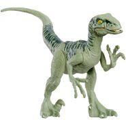 Raptor22