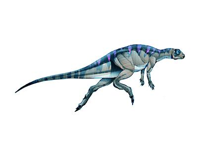 Fabrosaurus