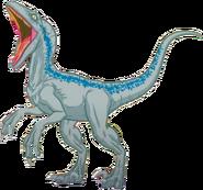RaptorClipArt2