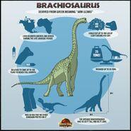 Brachio jurassicpark3d dino chart brachiosaurus