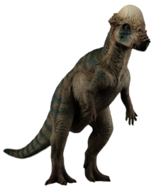 Jurassic park pachycephalosaurus by camo flauge-dcfu6qx.png