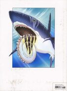 Helicoprion 4654