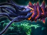 Kraken 18