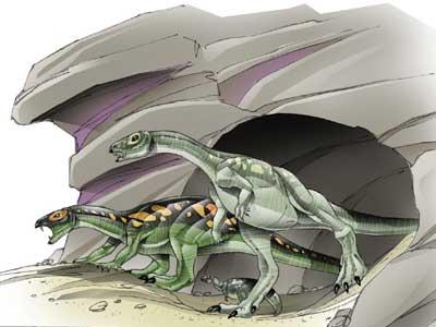 Echinodon