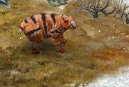 Diprotodon 40