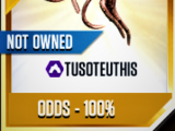 Tusoteuthis