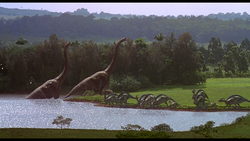 Стадобольшихималенькихпаразавров.png