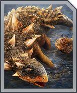 Euoplocephalus card