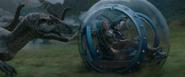 Allosaurus Gyrosphere