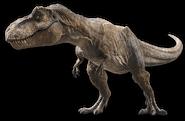 Jurassic world fallen kingdom tyrannosaurus v2 by sonichedgehog2-dcaly76