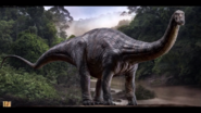 Jwapatosaurus