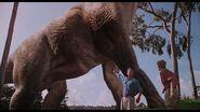 Jurassic park 4k 20
