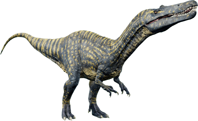 Suchomimus Jurassic World Evolution Wiki Fandom Copyrights of the character images used in this bundle belong to their respective owners and are not being sold. suchomimus jurassic world evolution