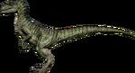 RaptorCharlie