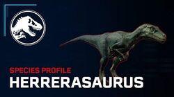 Species Profile - Herrerasaurus