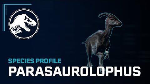 Species Profile - Parasaurolophus