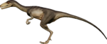 TroodonCoastal