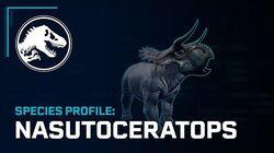 Species Profile - Nasutoceratops