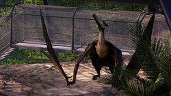 JWE Pteranodon Screenshot 1 copyright