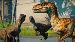 1574906875 Jurassic World Evolution Screenshot 2019.11.28 - 01.05.40.96