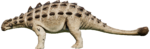EuoploArid