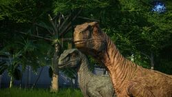 Raptor3Steve