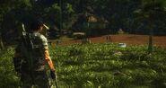 Unnamed Settlement X25500 Rico LOC 2