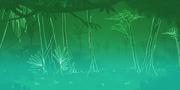 JungleBoogie map bkg