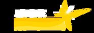 C-logo unlimited 300171