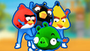 Angrybirds score card cover