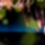 Primadonna cover albumbkg