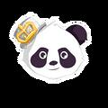 Chr panda 04