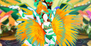 Samba BC
