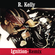 Ignition cover generic