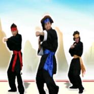 Kungfufighting jdk cover generic