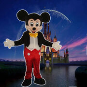 Mickey SQUARE.jpg