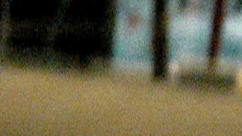 Justin Bieber swimming after his concert @ Big Splash in Tulsa,Oklahoma 7 18 09