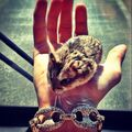 Pac in Justin's hand