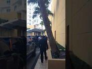 Justin going into his hotel in Miami