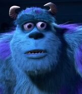 Sulley (Sullivan) in Monsters, Inc