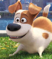 Max in The Secret Life of Pets-1