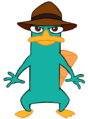 Perry The Platypus1