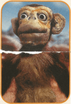 The-monkey-prometheus-and-bob-kablam-what-a-bunch-of-animals-quiz-ooze-news-nickelodeon-magazine-nick-mag-march-2000-nicktoons.png