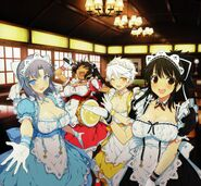 Leader Maids Welcomes You