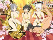 Gold Festival