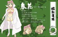 Shinovi Master New Link Haruka