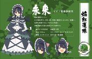 Shinovi Master New Link Mirai